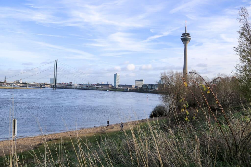 Wiese und ein kleiner Sandstrand am Rhein mit Ausblick auf den Fernsehturm