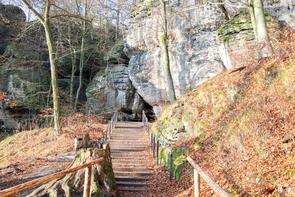 Treppenstufen im Wald