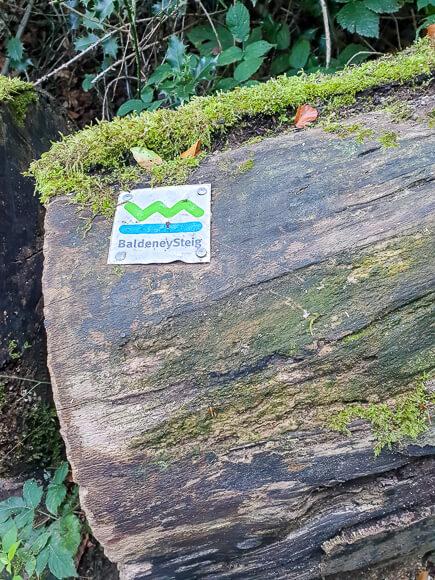 Wanderzeichen Baldeneysteig an einem Baumstamm