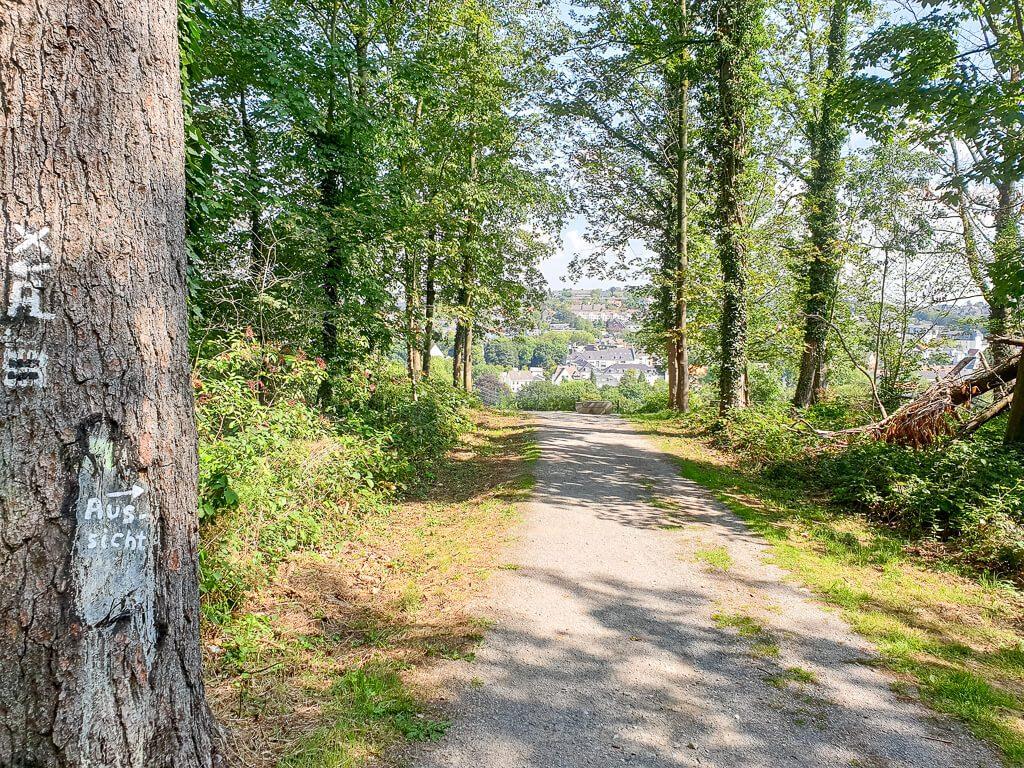 Weg im Wald zum Aussichtspunkt