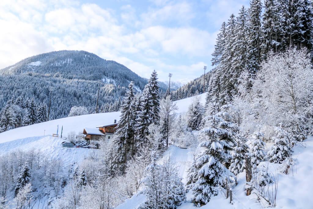 Schneebedeckte Bäume am Berg in Flachau