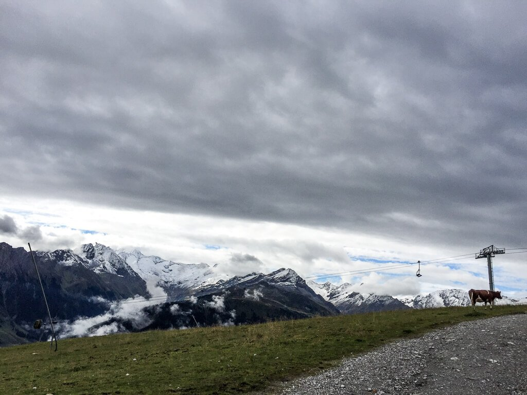 dunkle Wolke über den Bergen, auf einer Wiese steht am Rand eine Kuh