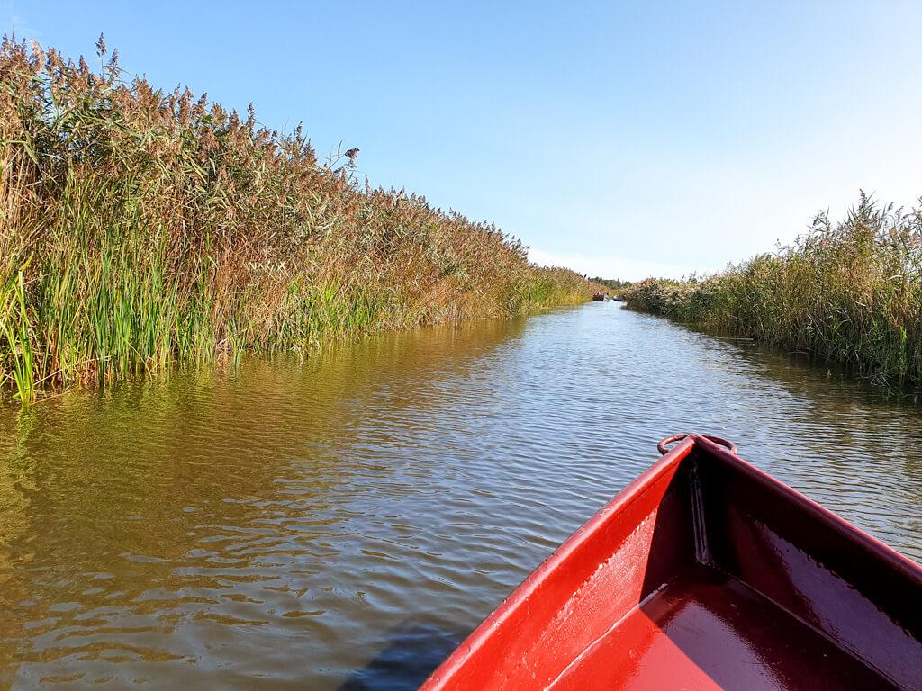 rotes Boot fährt über eine Gracht zwischen Gräsern entlang