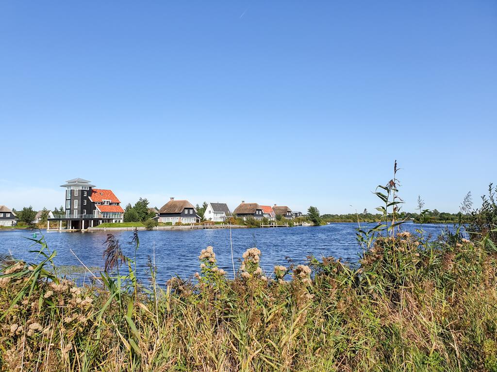 Häuser liegen am Ufer eines Flusses, davor einige Gräser