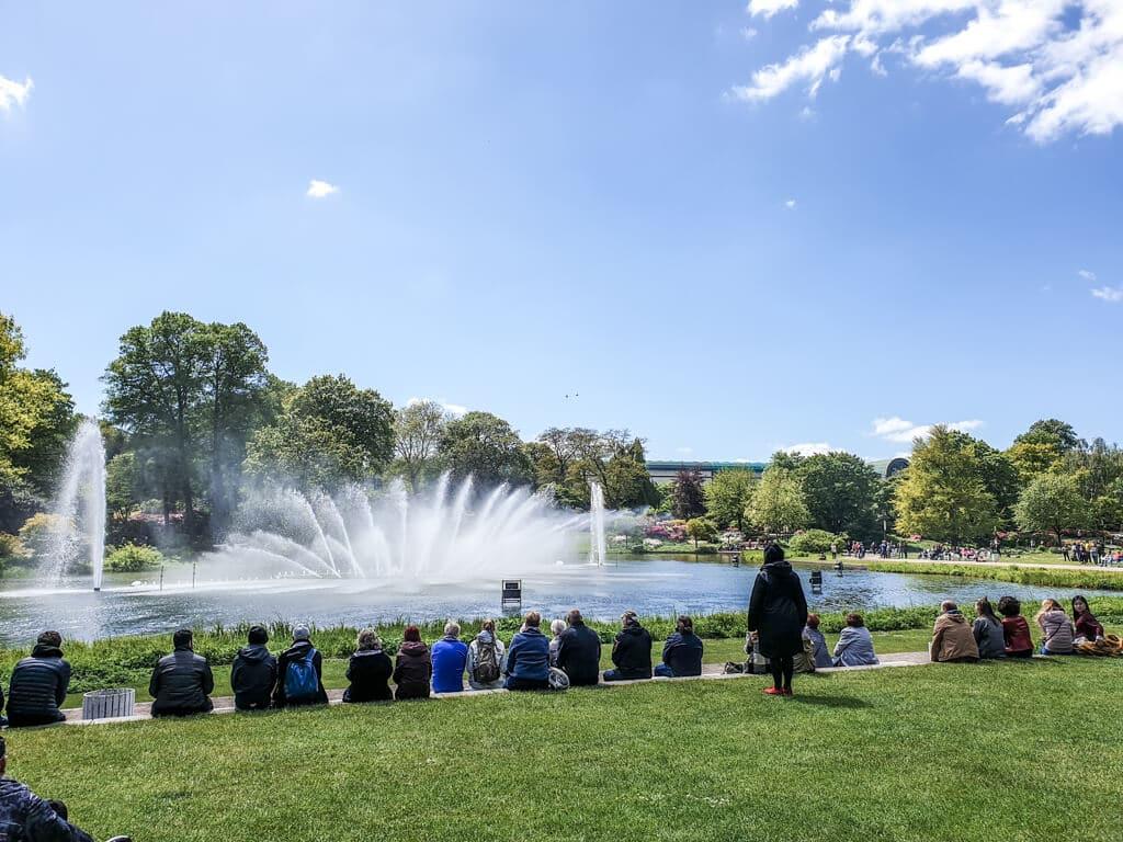 Zuschauer sitzen auf einer Wiese und schauen auf ein Wasserspiel in einem See