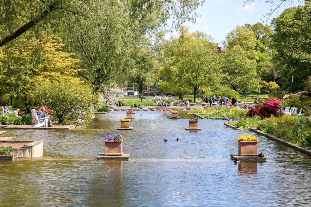 See inmitten eines Parks mit grünen Bäumen und Blumen