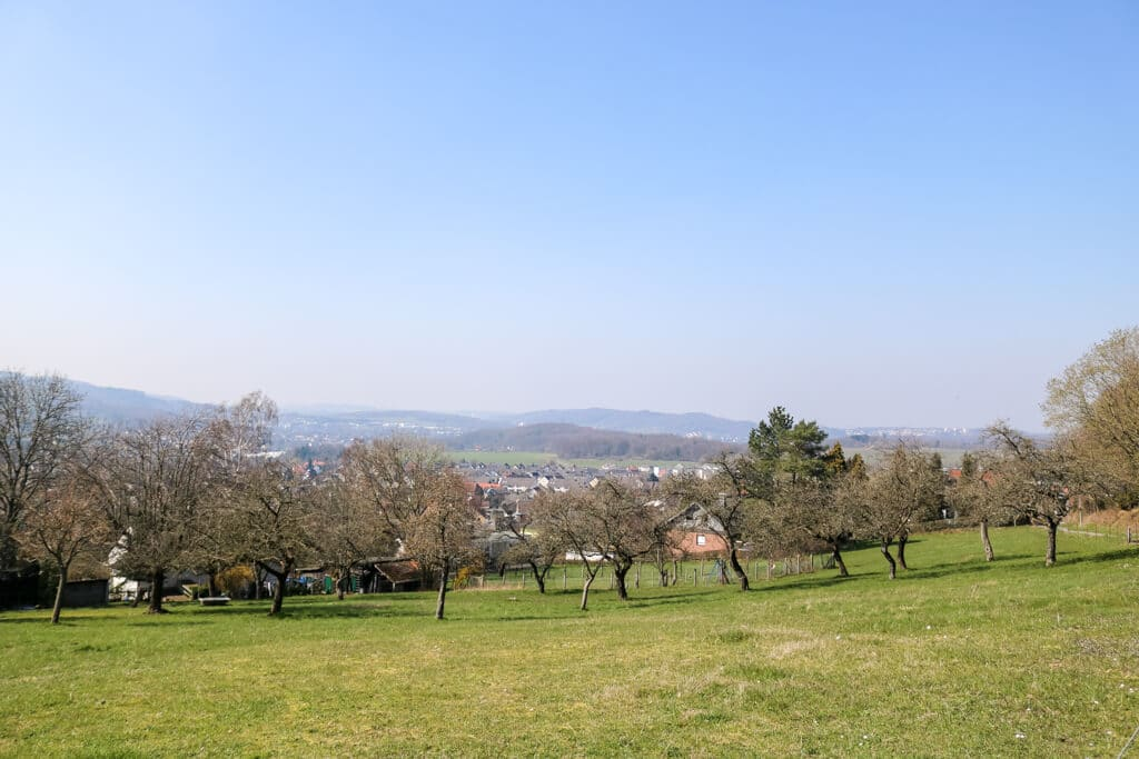 Ausblick über Wiesen und Bäume auf eine kleine Stadt