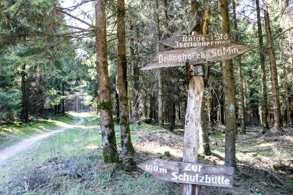 Wegweiser mit Holzschildern an einem Waldweg