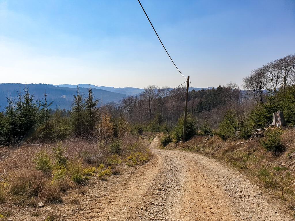 Wandern auf einem breiten Schotterweg im Wald im Sauerland