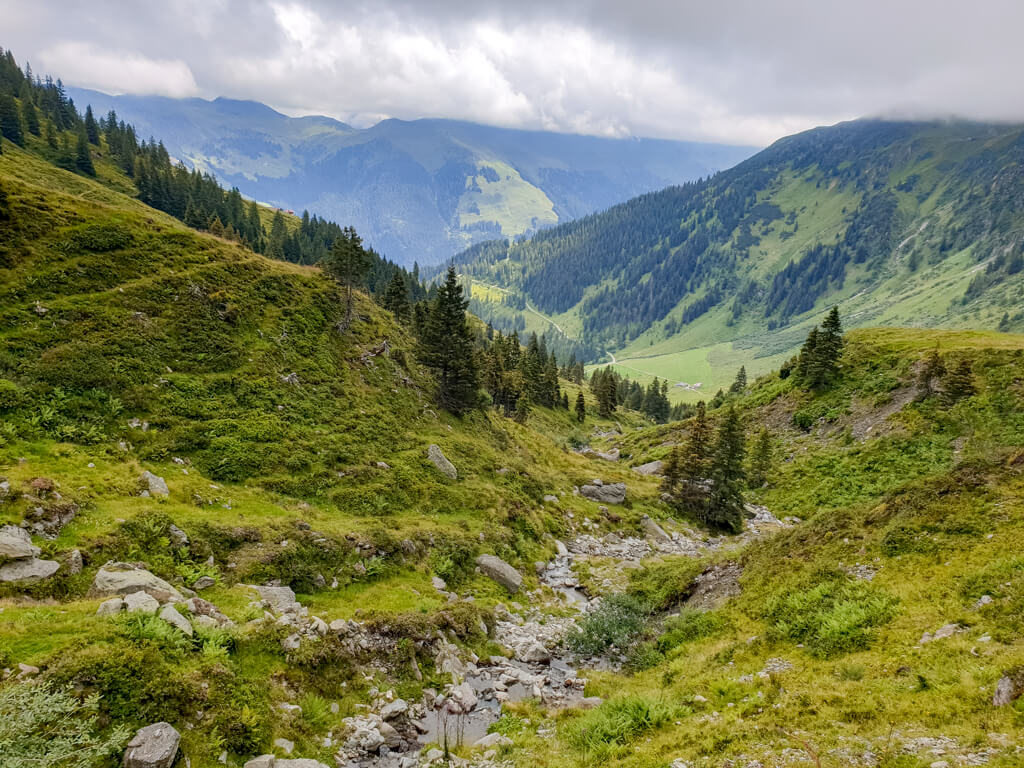 Wanderweg mitten durch grüne Wiesen in den Grasbergen