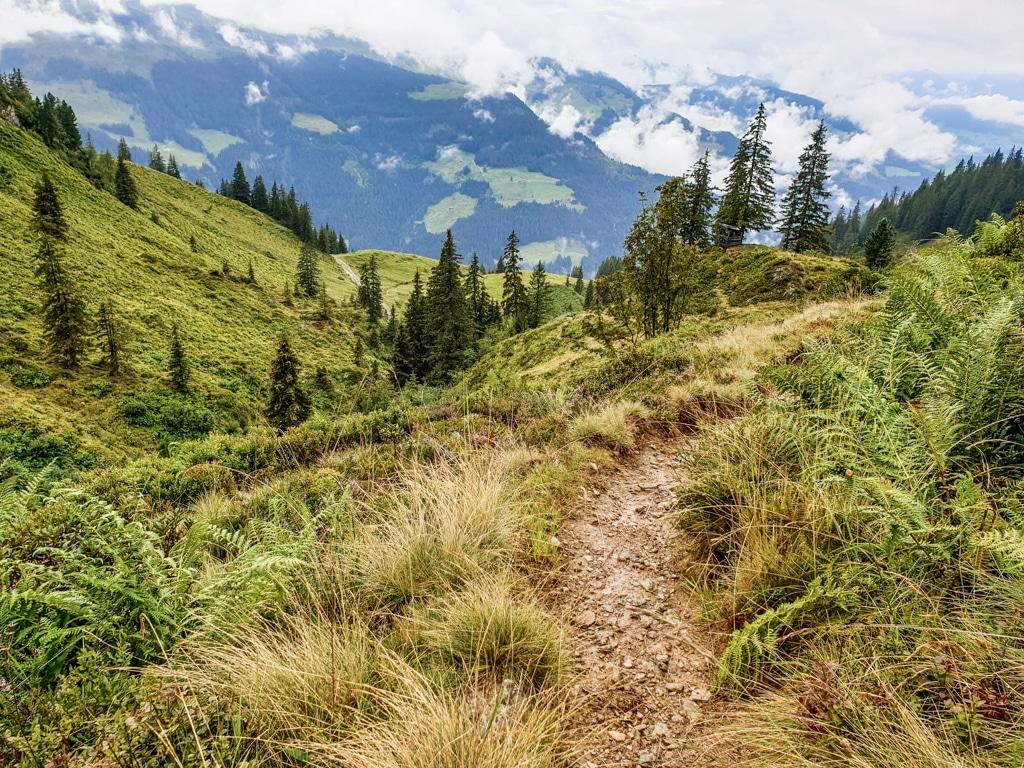 Wanderweg inmitten der Grasberge