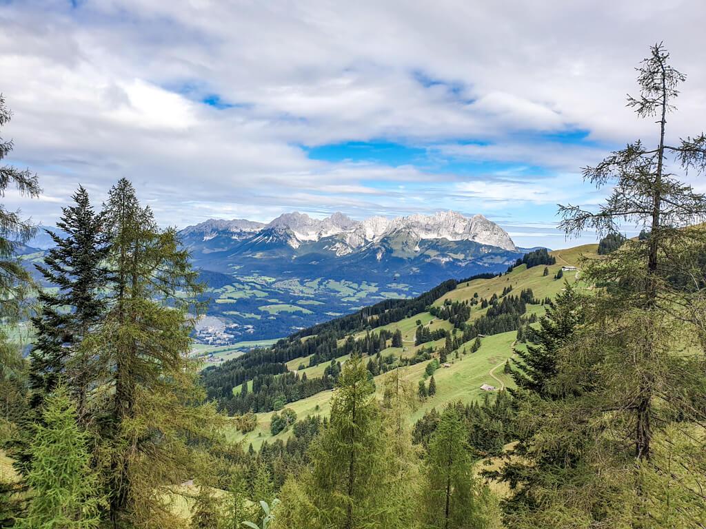 Aussicht zwischen Bäumen auf Berggipfel in Kitzbühel