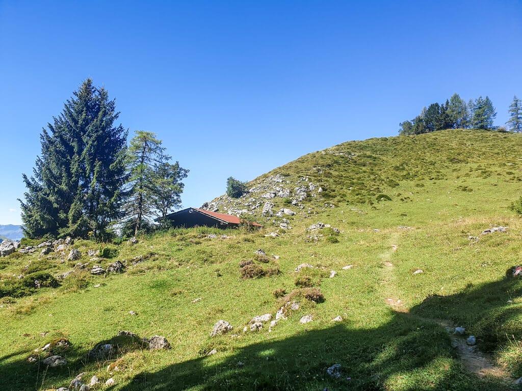 grüne Bergwiese mit einer kleinen Hütte