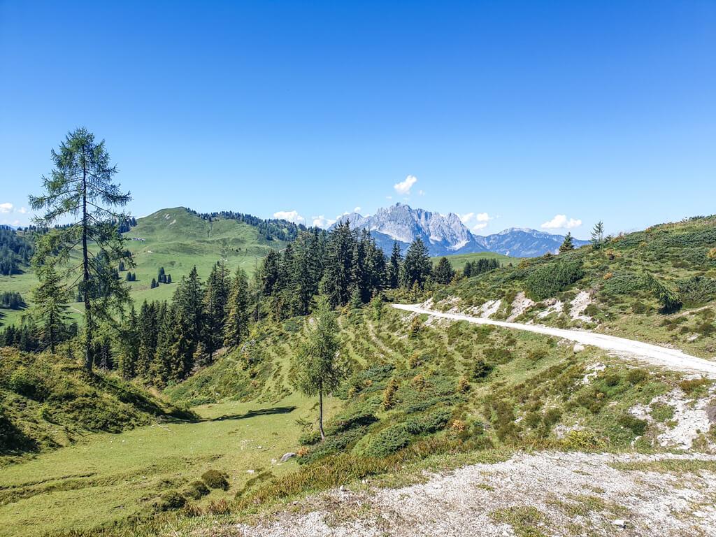 Wanderweg in den Kitzbüheler Alpen mit Blick auf grüne Berge