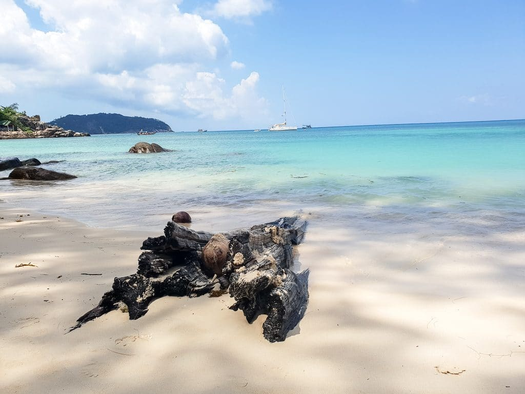weißer Sandstrand mit Treibholz - dahinter türkises Meer
