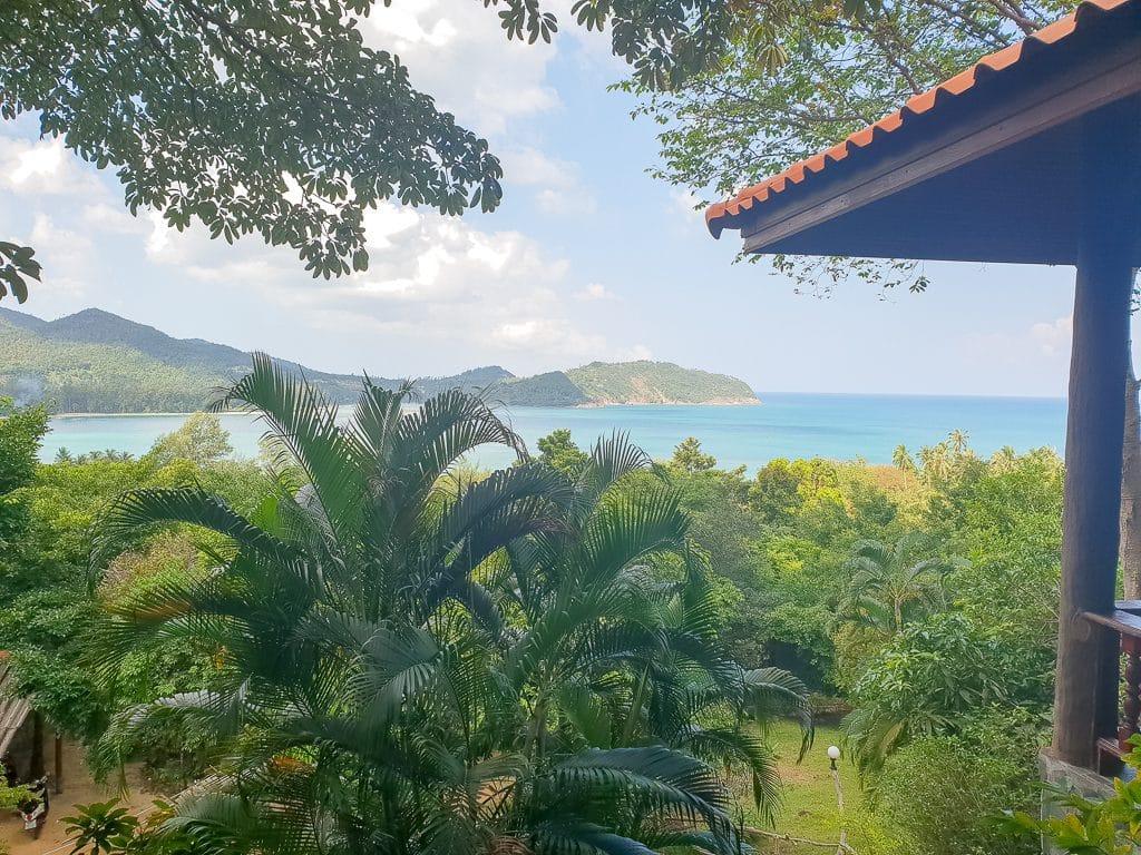 Ausblick über Palmen und Bäume - im Hintergrund ist das Meer zu sehen
