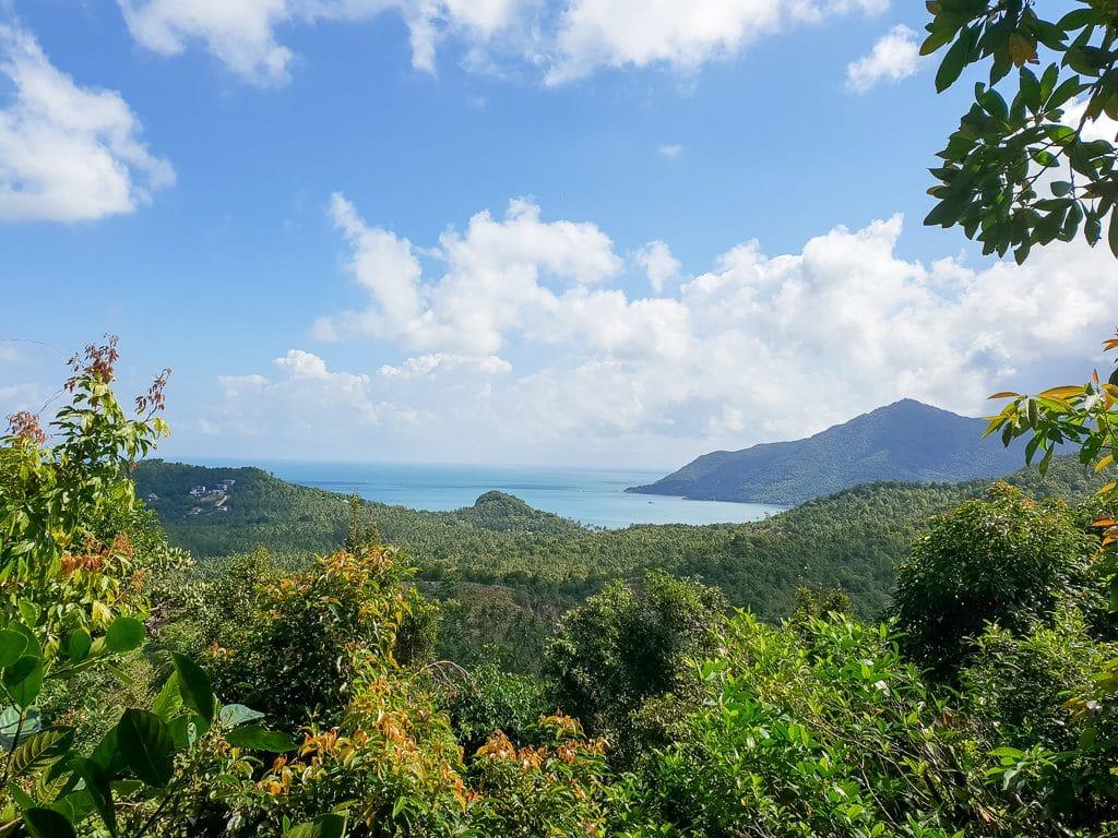 Aussicht über grüne Wälder bis hin zum Meer