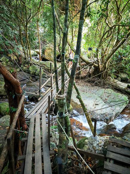 Ko Samui - wackelige Holzbrücke führt im Wald über einen Fluss