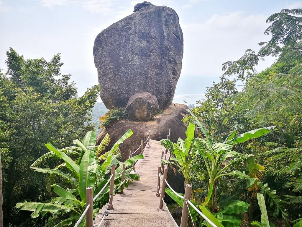 Holzbrücke führt zu einem großen Stein und Aussichtspunkt mitten im Wald