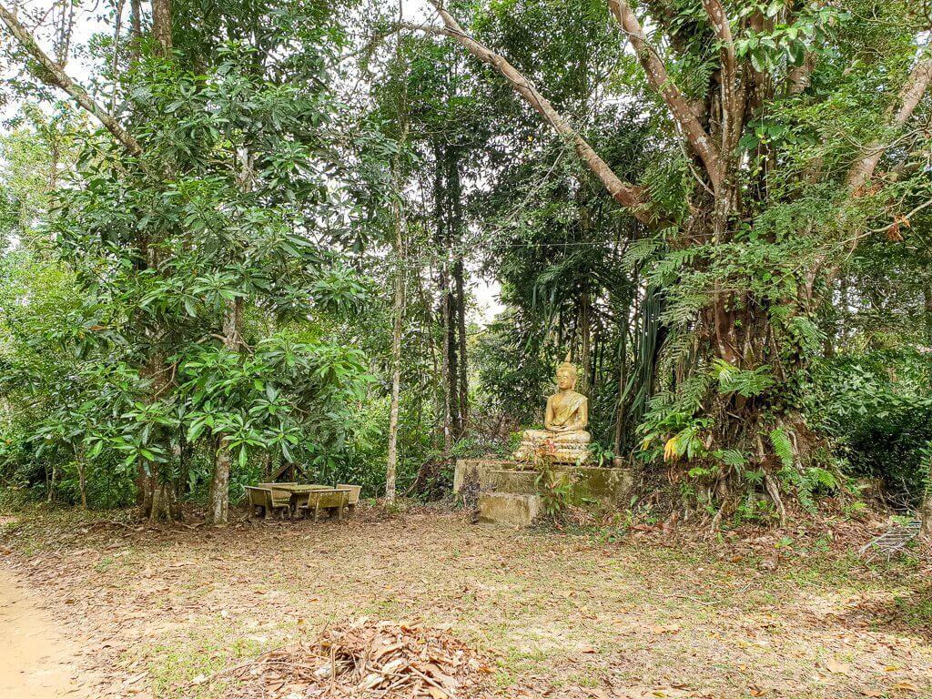 Buddha Statue an einem Weg im Wald