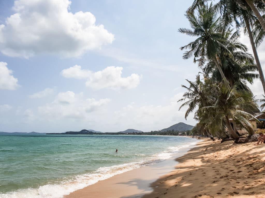 Sandstrand mit Palmen, daneben das blaue Meer
