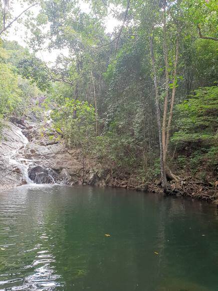 Wasserfall läuft in großes Becken - rundherum Bäume