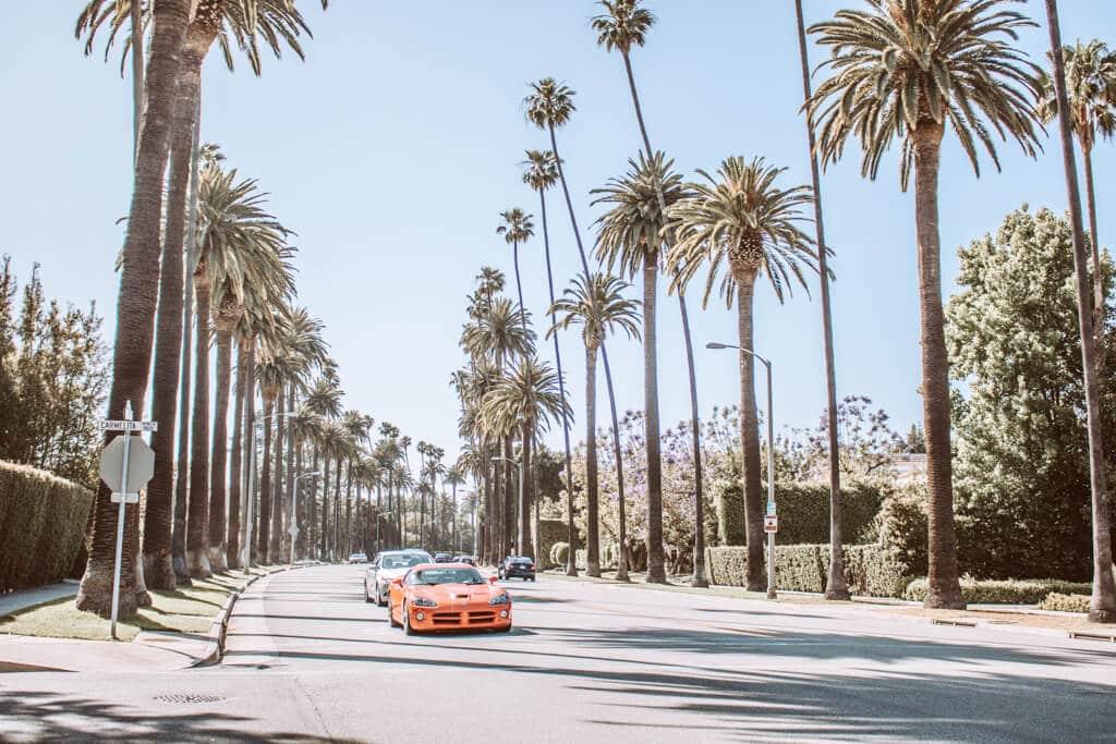 breite Straße mit hohen Palmen zu beiden Seiten - auf der Straße ein roter Sportwagen