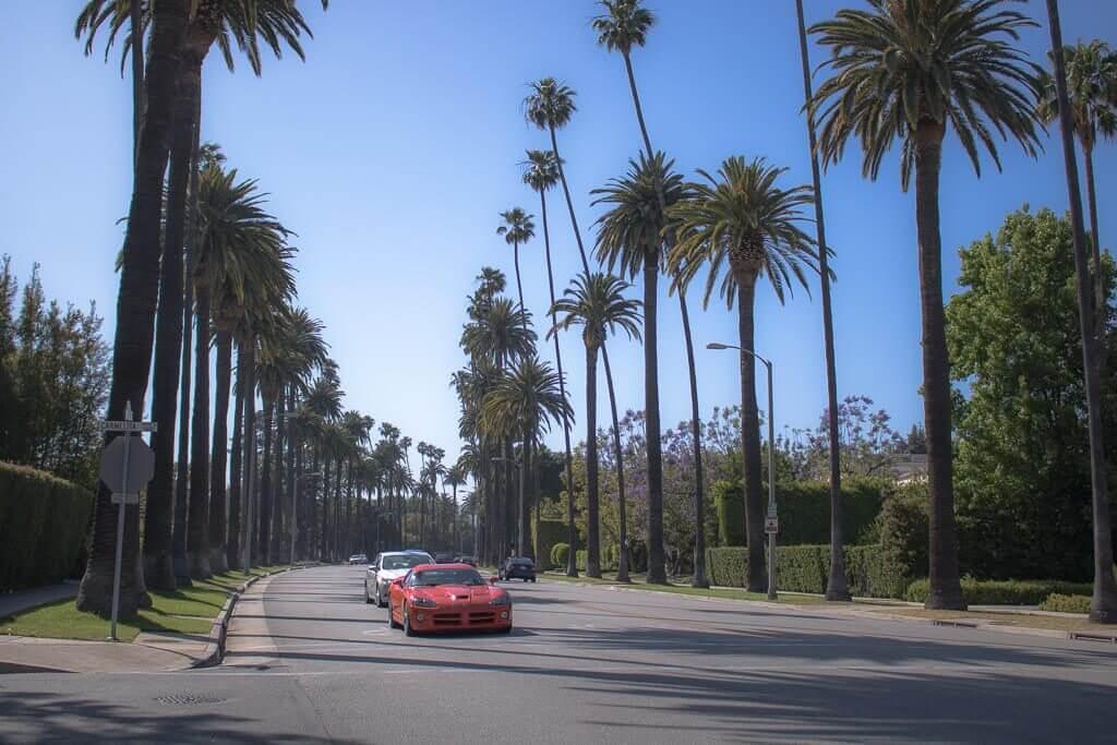 Los Angeles - Beverly Hills - Palmengesäumte Straße - Sportwagen