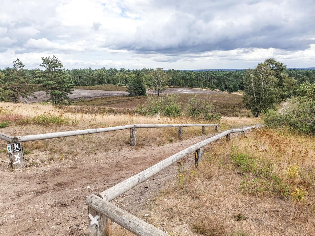 Sandweg ist von einem kleinen Holzgeländer gesäumt und verläuft durch die Heide mit Gräsern und grünen Bäumen