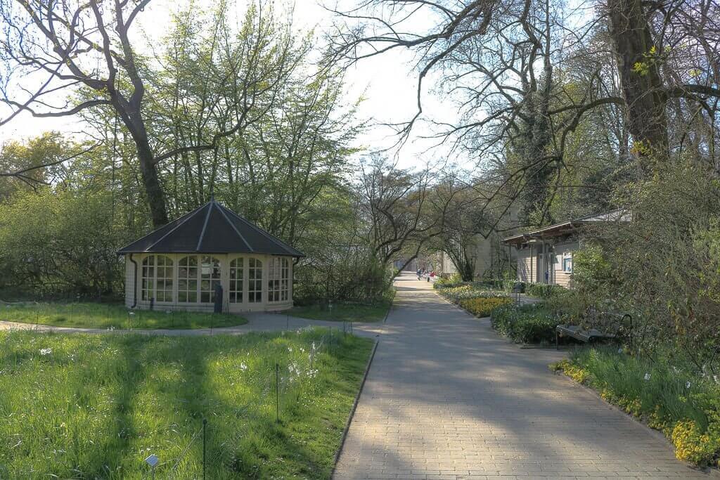 Münster - Botanischer Garten - Weg im Grünen