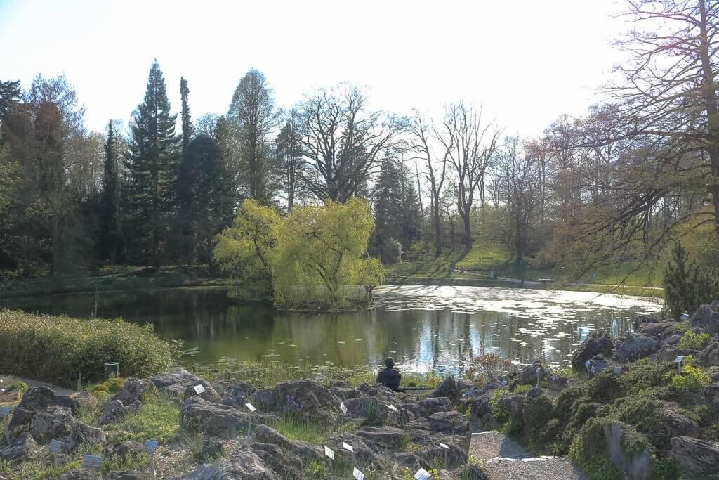 Münster - Botanischer Garten - See