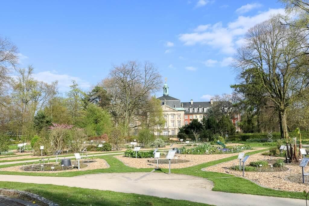 Münster - Botanischer Garten mit Blick auf das Schloss