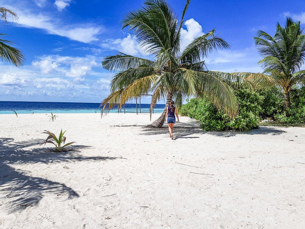 Malediven - Strand - Palme - Honeymoon