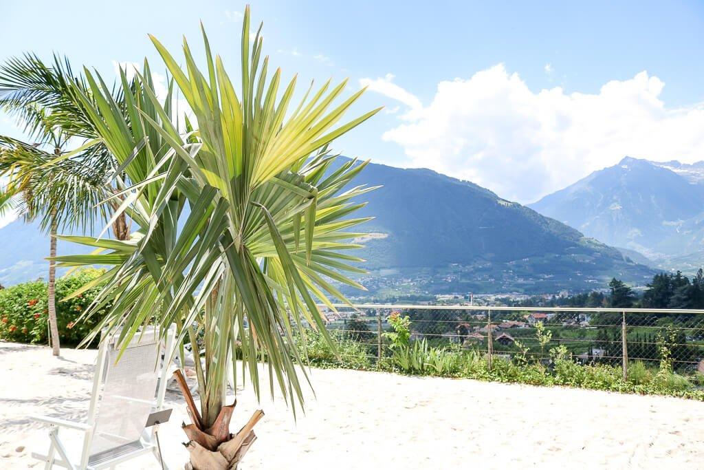 Palme auf einem Sandstrand - im Hintergrund hohe Berge und grüne Bäume