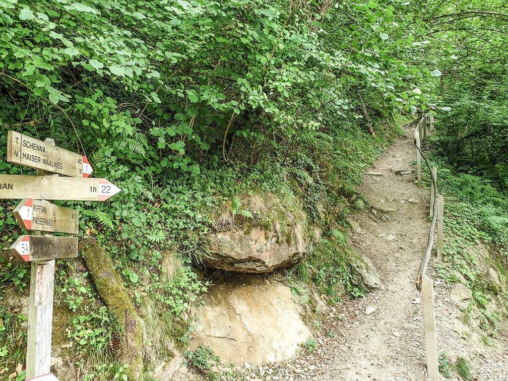 Wanderweg im Wald mit Holzwegweiser