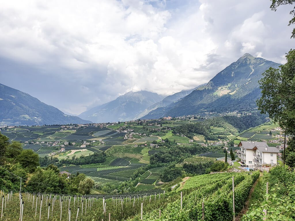 Weinberge und grüne Hügel, dazwischen immer wieder Häuser und Berge