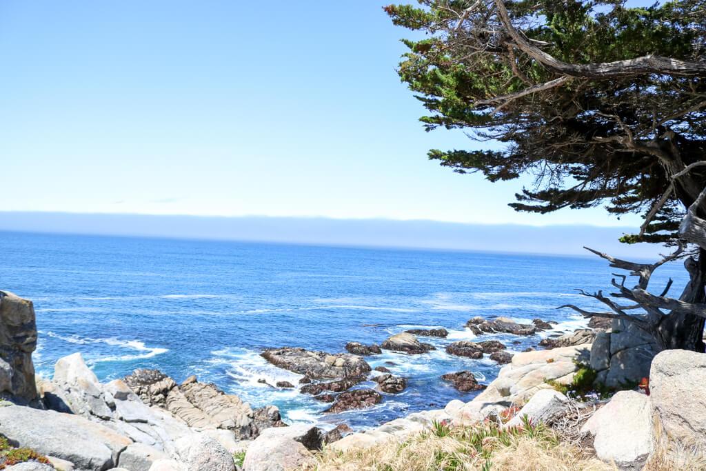 Blick aufs Meer mit kleinen Felsen im Wasser und Bäumen am Ufer