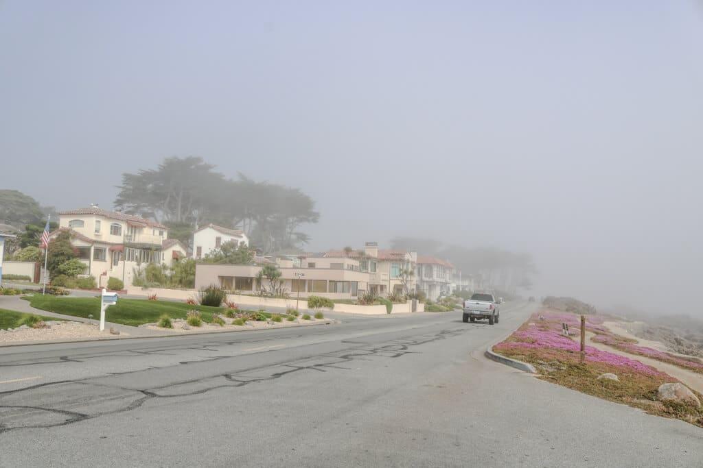 Straße im Nebel - links Häuser, rechts rosafarbene Blumen und ein sandiger Weg