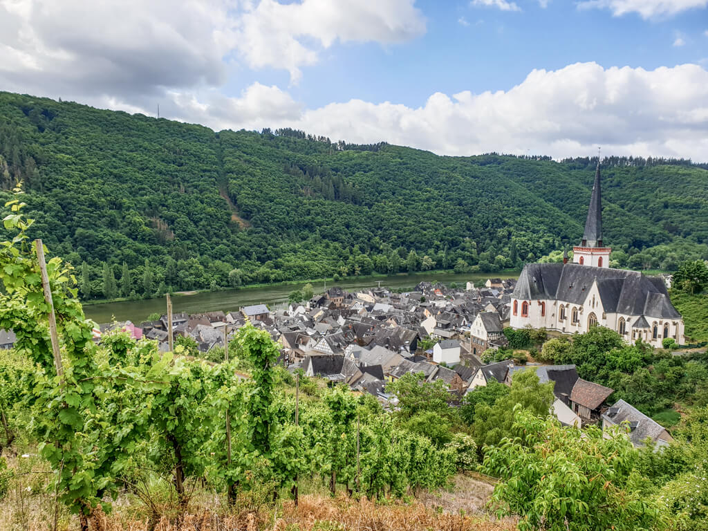 kleiner Ort mit Kirche an der Mosel in den Weinbergen