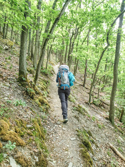 Frau wandert auf dem Moselsteig im Naturschutzgebiet Dortebachtal im Wald