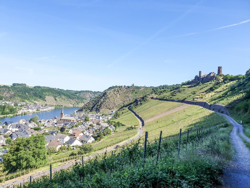Wanderweg mit Blick auf den Ort Alken und die Mosel links, dazwischen Weinberge und rechts thront Burg Thurant auf einer Anhöhe