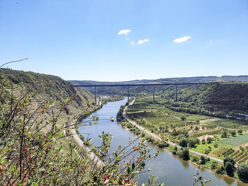 Mosel fließt in der Mitte zwischen grünen Feldern und Weinhängen. Über der Mosel spannt sich eine lange und hohe Brücke