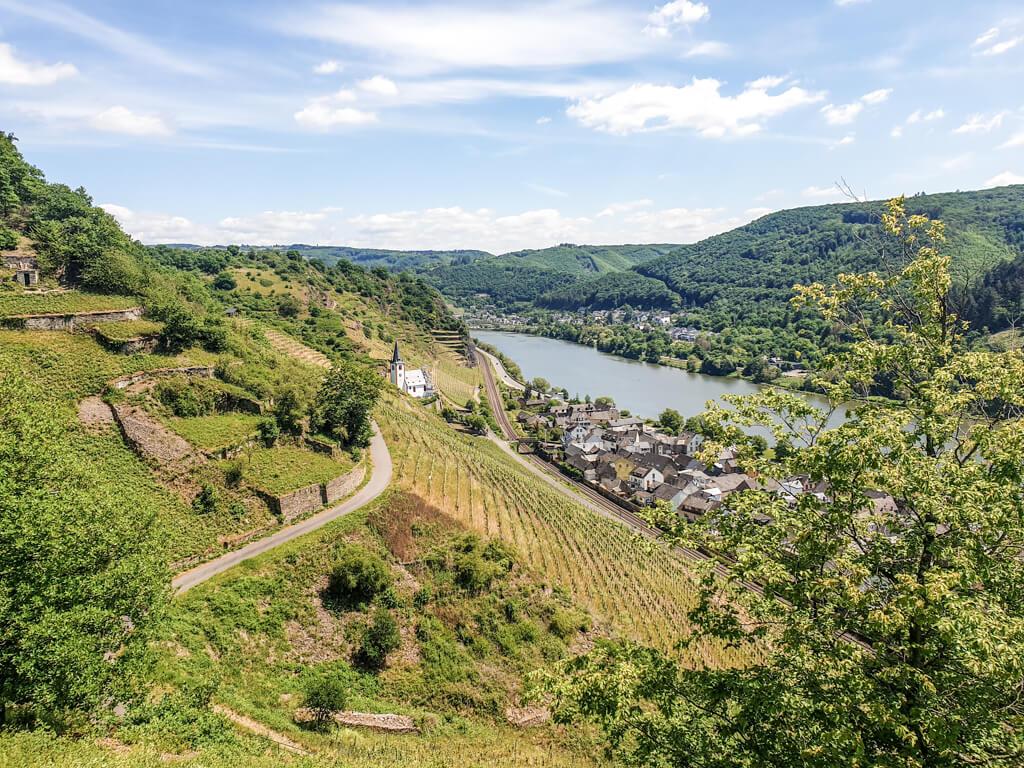 Wanderweg zwischen Hügeln und Weinbergen mit Blick auf die Mosel