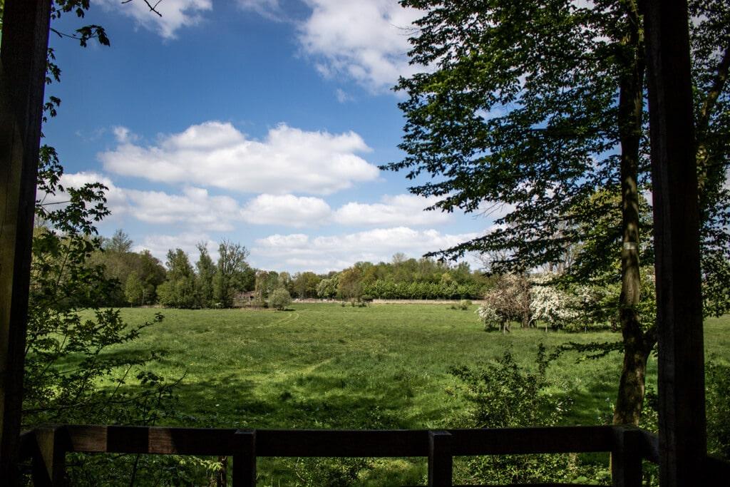 Grüne Wälder und Wiesen mit blauem Himmel in Nordkirchen