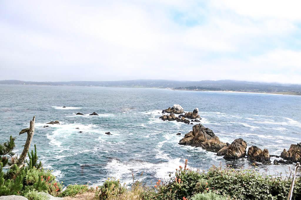 Blick auf den Pazifik mit einigen Felsen im Wasser und Blick auf die gegenüberliegende Küstenlinie. Im Vordergrund sind einige flache Sträucher