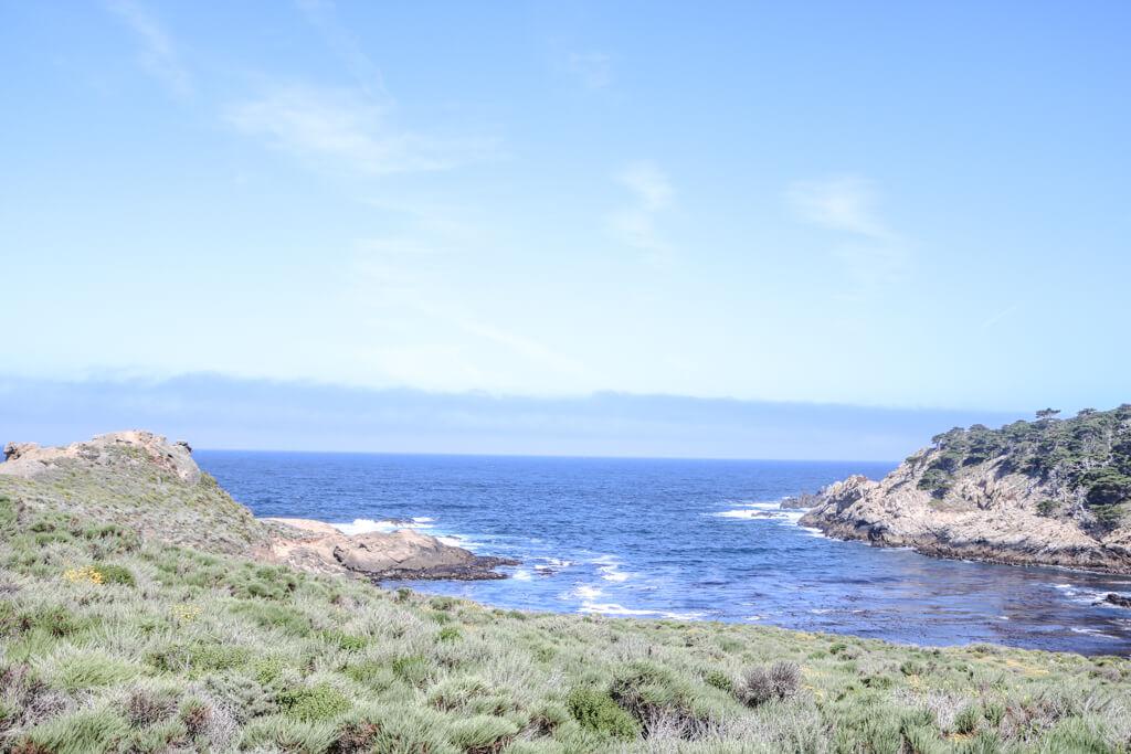 kleine Bucht im Point Lobos in Monterey - das Meer leuchtet blau und ist umgeben von einer Bucht mit kleinen Sträuchern, Gräsern und Felsen