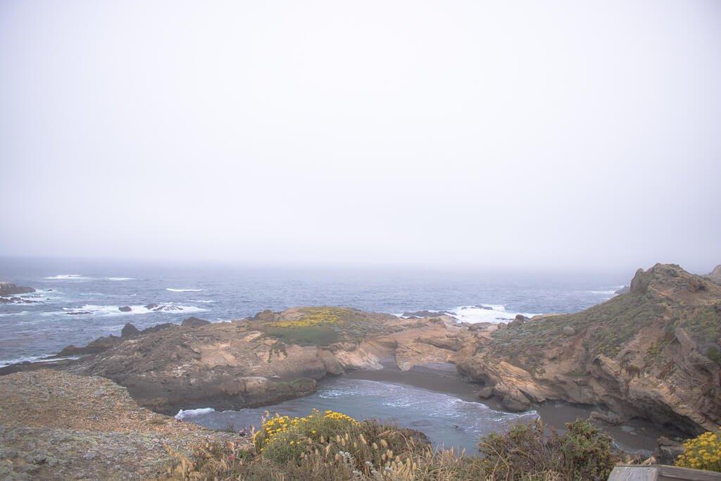 Monterey - Point Lobos - Küste - Seelöwen - Felsen im Meer
