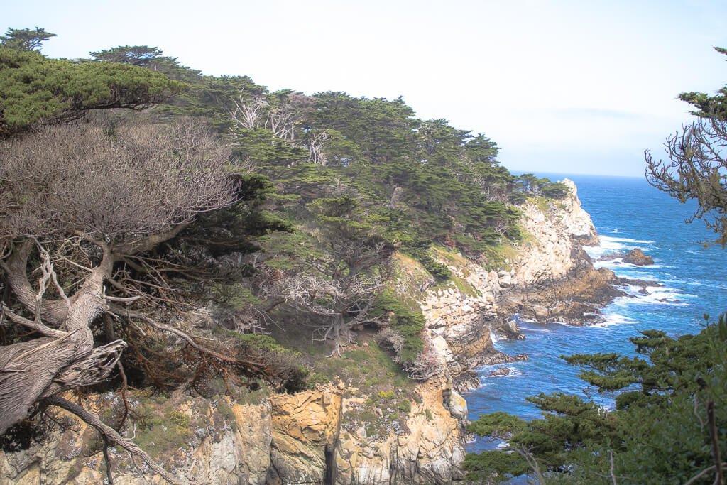 Monterey - Point Lobos - Wald, Küste, Ozean