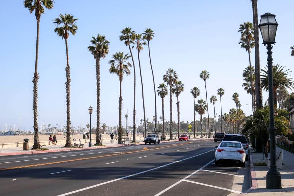 Straße mit Palmen gesäumt - links der Strand und das Meer