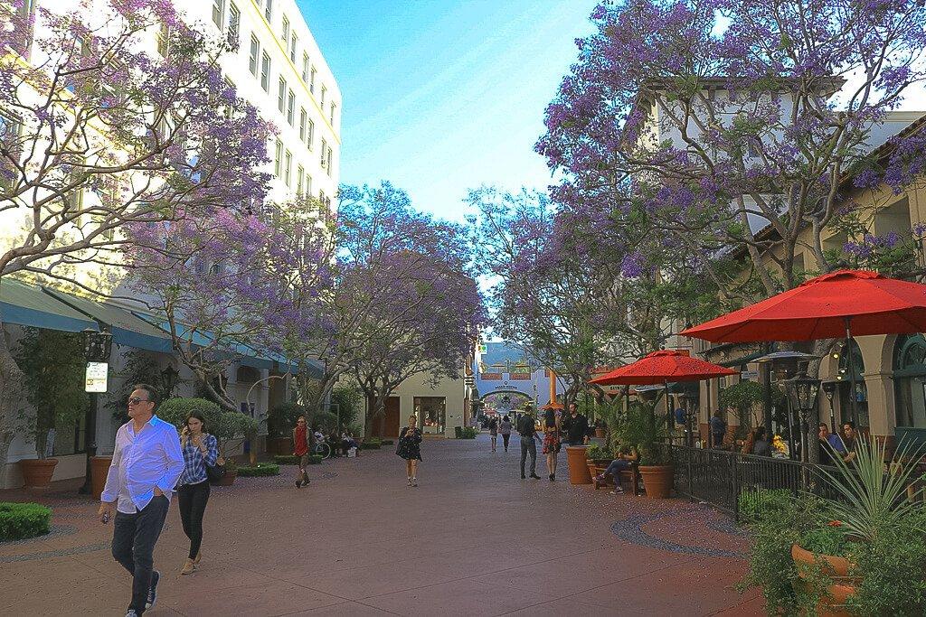 Santa Barbara - kleine Gasse - blühende Fliederbäume